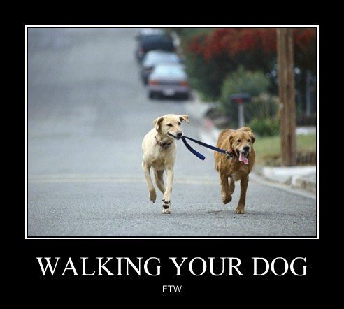 WALKING YOUR DOG FTW