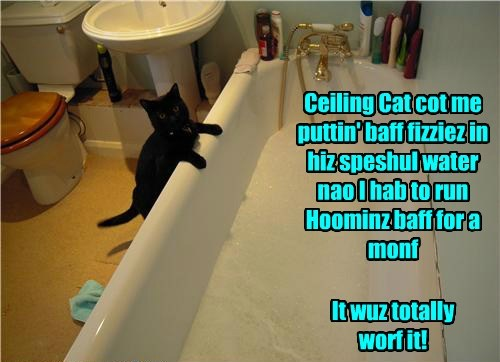 Ceiling Cat cot me puttin' baff fizziez in hiz speshul water nao I hab to run Hoominz baff for a monf It wuz totally worf it!