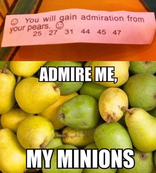 funny,fortune cookies,pears
