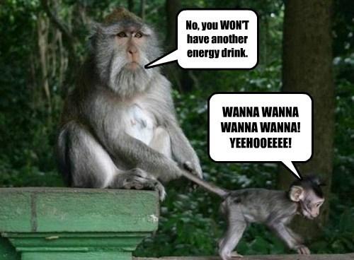 crazy caffeine energy drink monkeys - 7902639360
