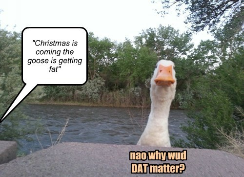 """""""Christmas is coming the goose is getting fat"""" nao why wud DAT matter?"""
