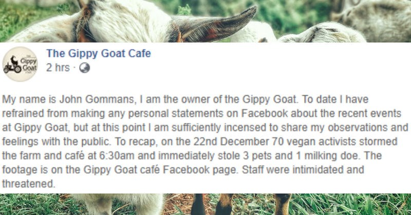 goats activism facebook social media vegan animals win - 7904517