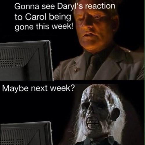 daryl dixon carol peletier waiting is the hardest part - 7905706752