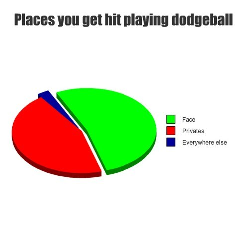 face,dodgeball,Pie Chart,right in the crotch