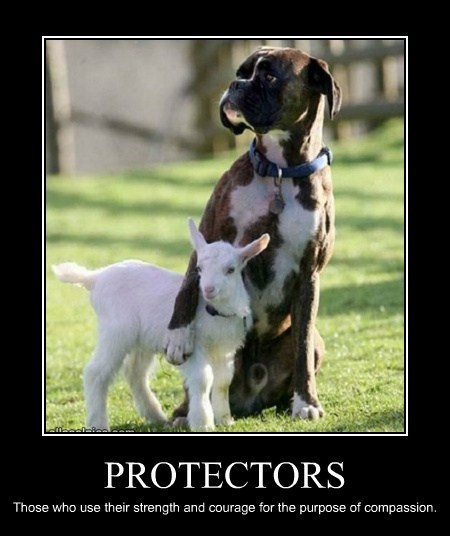 PROTECTORS Those who use their strength and courage for the purpose of compassion.