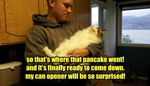 so that's where that pancake went! and it's finally ready to come down. my can opener will be so surprised!