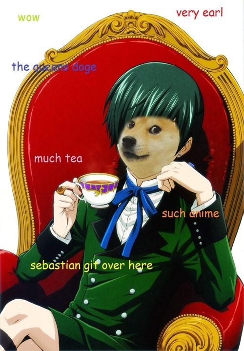 anime doge - 7906886400