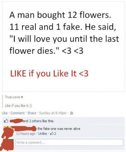 dating flowers romance - 7907151104