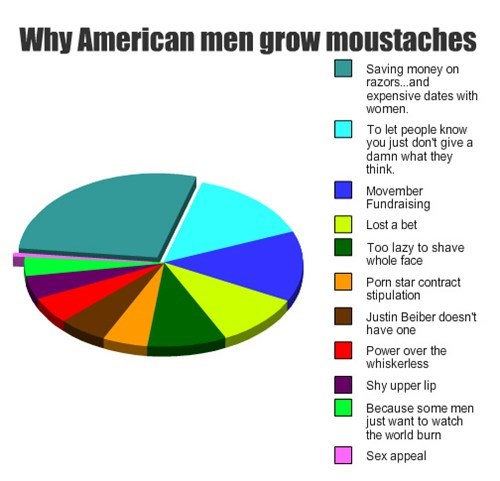 american,facial hair,money,Pie Chart,mustaches