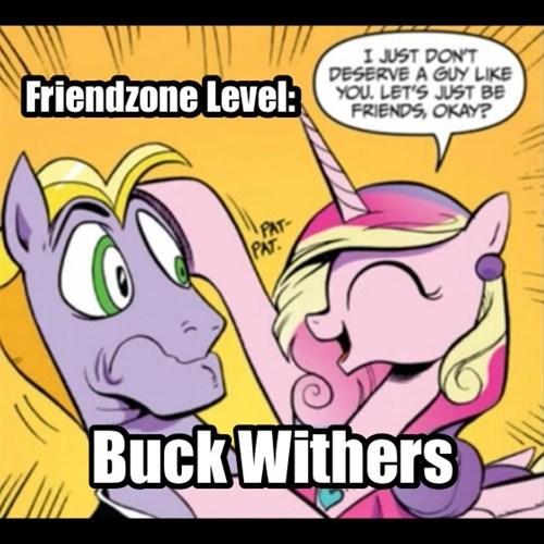 friendzone princess cadence buck withers welcome new brony - 7907350528