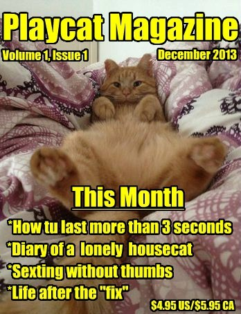 "Playcat Magazine This Month *How tu last more than 3 seconds December 2013 Volume 1, Issue 1 *Diary of a lonely housecat *Life after the ""fix"" *Sexting without thumbs $4.95 US/$5.95 CA"