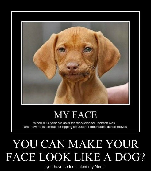 dogs face impression funny - 7908555264