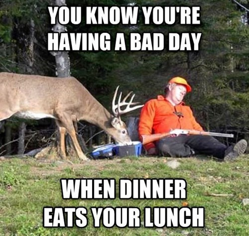 deer FAIL hunter dinner lunch - 7908572160
