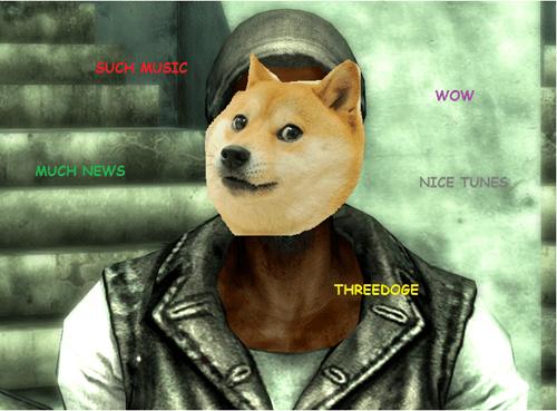 doge,Memes