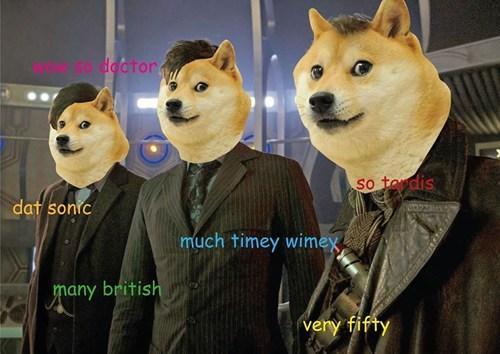 doge doctor who dogetor who - 7909239296