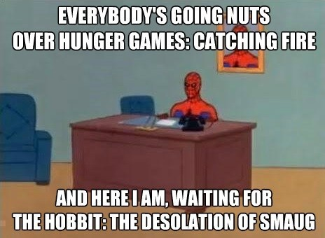 catching fire,desolation of smaug,hunger games,The Hobbit