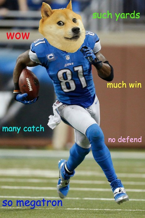 doge,sports,calvin johnson