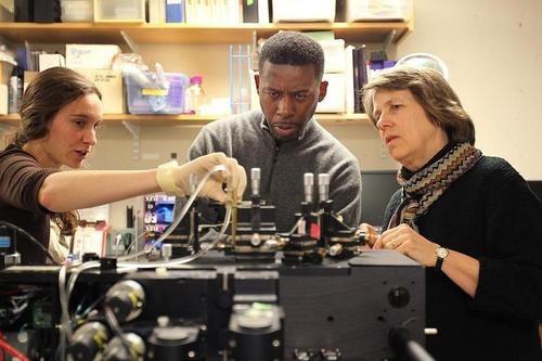 MIT hip hop celeb science - 7912685312