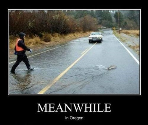 fishing funny oregon wtf Meanwhile - 7912820992