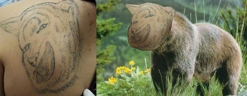 bear,funny,tattoos,g rated,Ugliest Tattoos