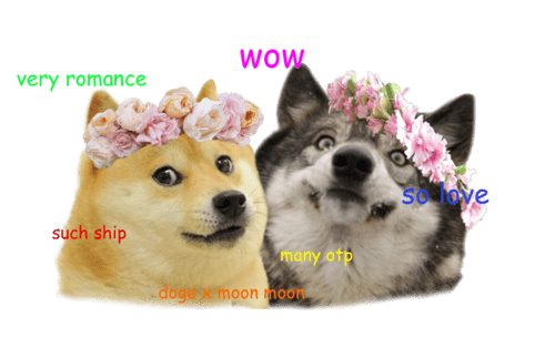 perfect moon moon doge - 7913144832