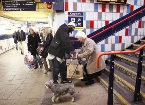 dawww funny random act of kindness restoring faith in humanity week - 7913179136