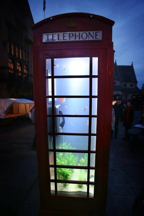 aquarium,design,funny,phone booth