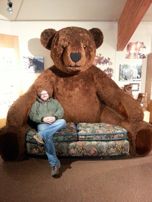 bears couch giant funny wtf - 7916221696