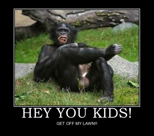 chimps funny get off my lawn - 7916299520