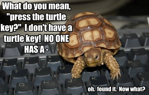 "What do you mean, ""press the turtle key?"" I don't have a turtle key! NO ONE HAS A - oh. found it. Now what?"