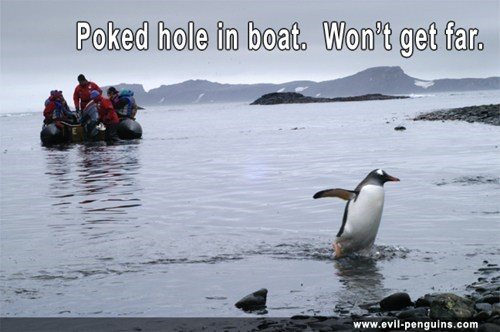 penguins,evil penguin,tourists,boat,funny