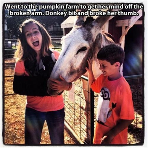 bad day bummer donkey - 7916521472