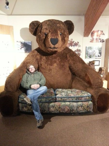 furniture teddy bears parenting g rated - 7916741888