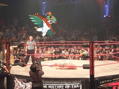funny wrestling hawlucha - 7918064128