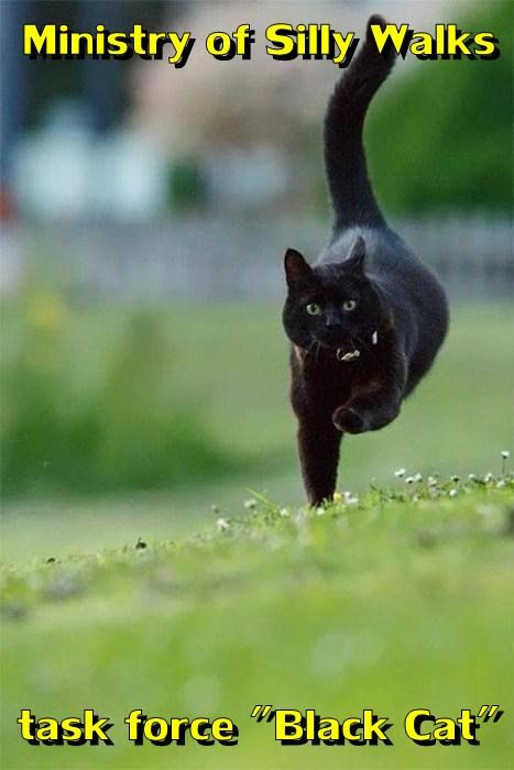"""Ministry of Silly Walks  task force """"Black Cat"""""""
