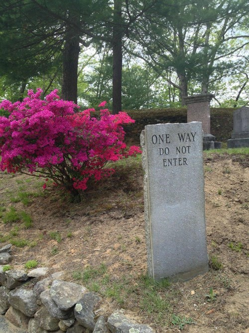 cemetery funny wisdom gravestone