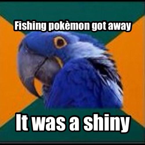 funny,Paranoid Parrot,shiny
