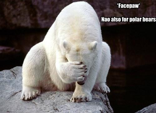 *Facepaw*  Nao also for polar bears