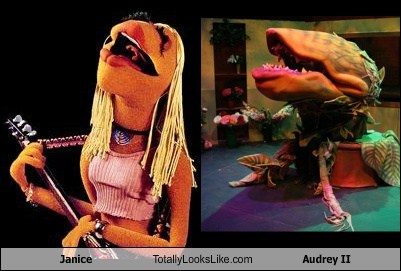 muppets,Audrey II,janice,totally looks like,funny