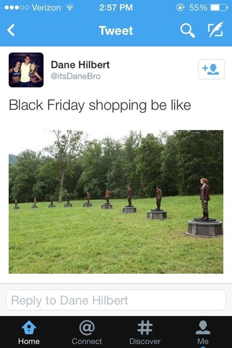 thanksgiving shopping black friday hunger games