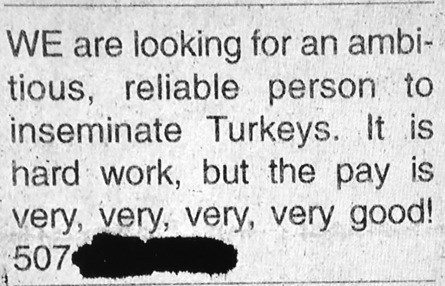 jobs,gross,classifieds,funny,newspaper