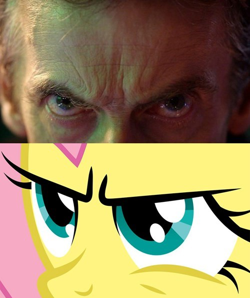12th Doctor,fluttershy,that stare