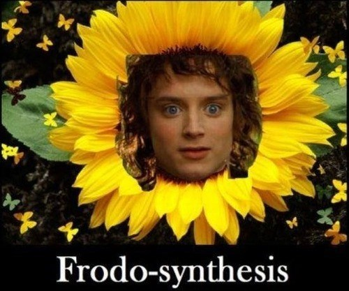 frodo jokes Lord of the Rings photosynthesis - 7924543488