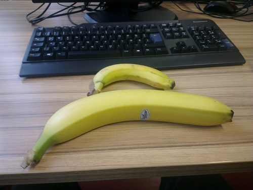 banana,fruit,huge,funny,what