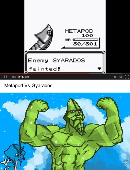 Fan Art,funny,gyarados,metapod