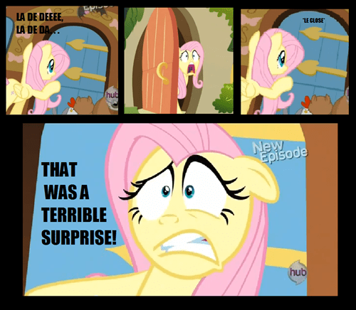 all the ponies,fluttershy,terrible surprise