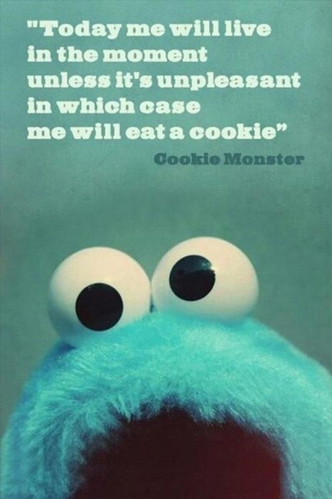 advice Cookie Monster kids parenting - 7925500160