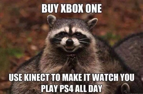 console wars,evil plotting raccoon,PlayStation 4,xbone