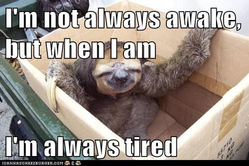 I'm not always awake, but when I am I'm always tired