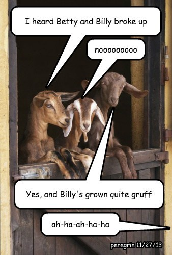 billy,kids,puns,goats